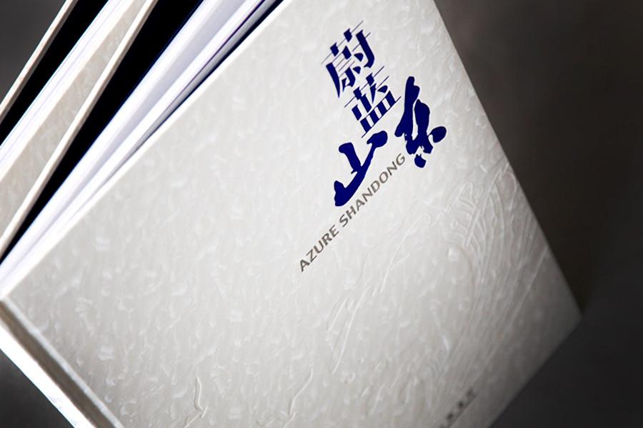 山东省海洋与渔业厅外宣画册